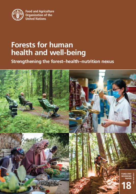 """FAO published """"Forests for human health and well-being"""""""
