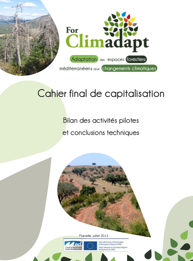 FORCLIMADAPT'S PUBLICATIONS