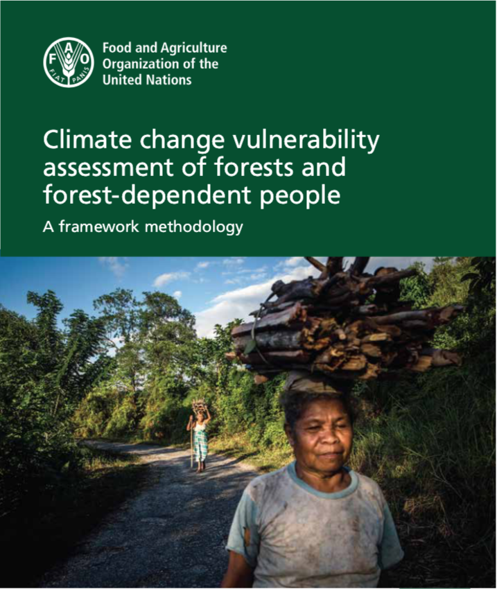 FAO published a framework methodology on climate change vulnerability assessment of forests and forest-dependent people