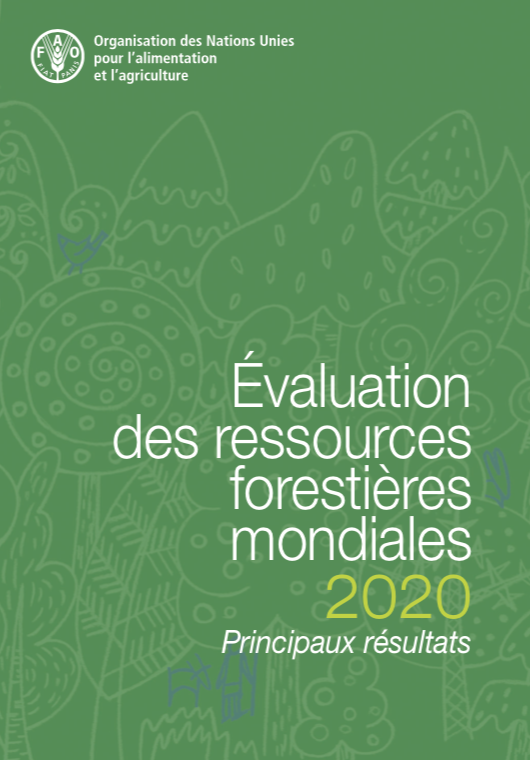 FAO published key findings of the Global Forest Resources Assessment 2020