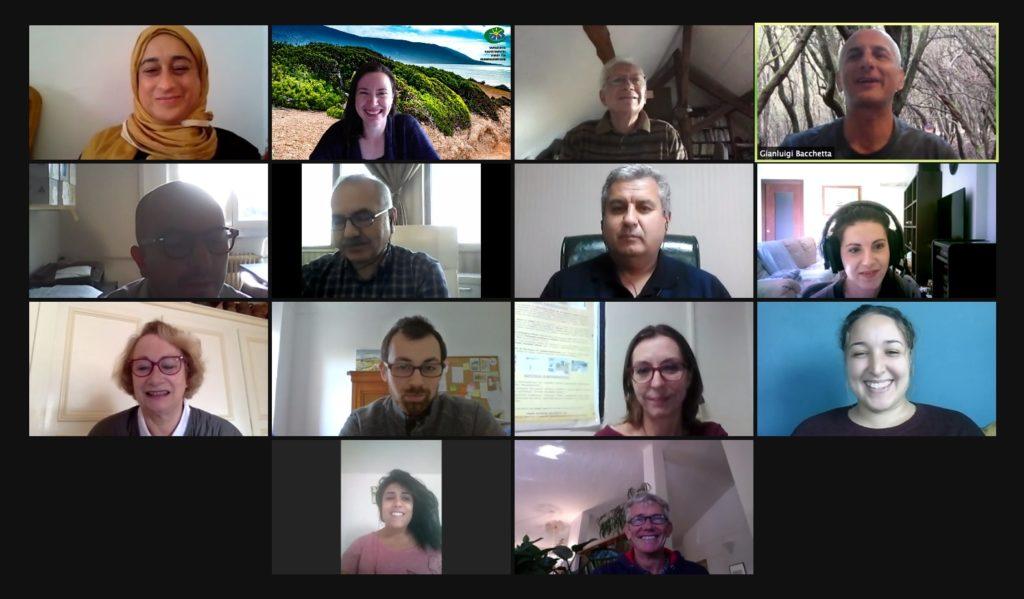 Second videoconference of the MEDLENTISK project
