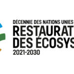 The United Nations Decade of Ecosystem Restoration strategy has been released