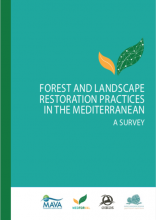 MEDFORVAL and Institute Oïkos published a survey on forest and landscape restoration practices in the Mediterranean