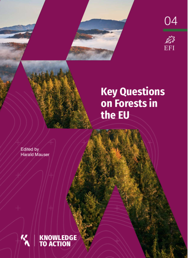 European Forest Institue published a report on key questions about forests in EU